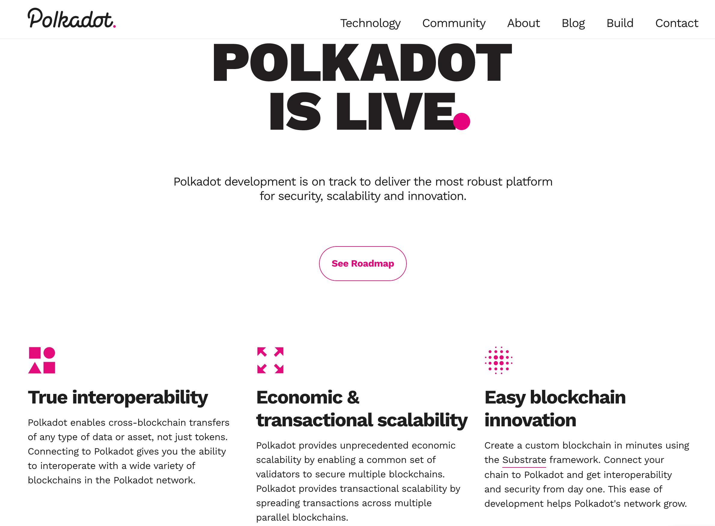 Polkadot Webseite