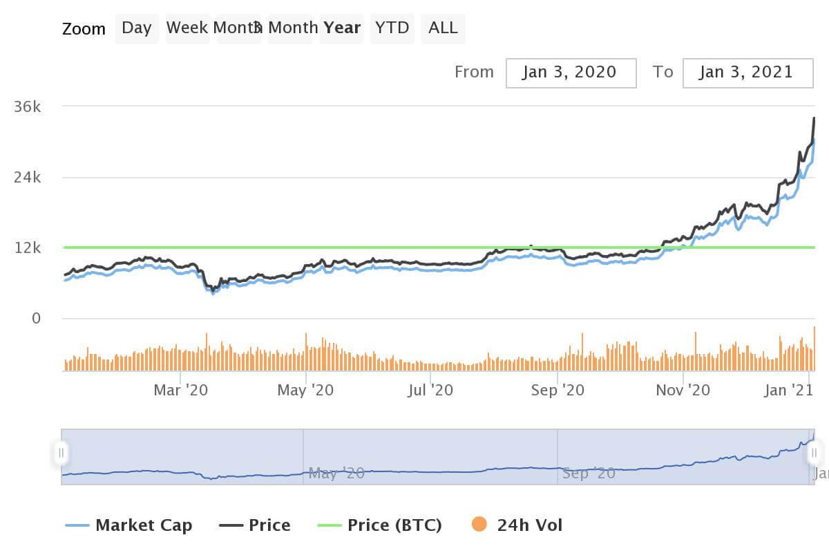 Bitcoin Geburtstag 1 Jahres Chart