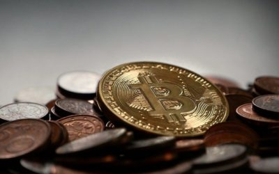 Elon Musk & Peter Schiff   Bitcoin vs Gold