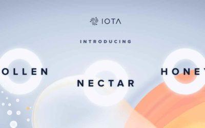 IOTA Update: Iota`s Weg in die entscheidende Entwicklungsphase